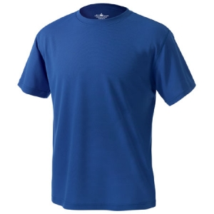 Charles River Mens Solid Wicking T-Shirt - Royal - 3830